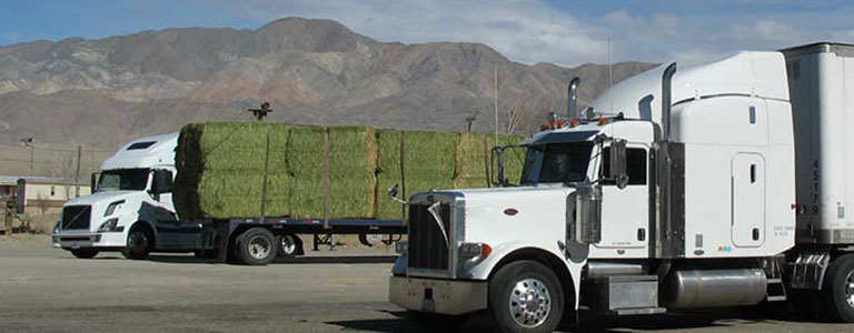 The Must-Have Tool Kit for Owner Operator Truckers