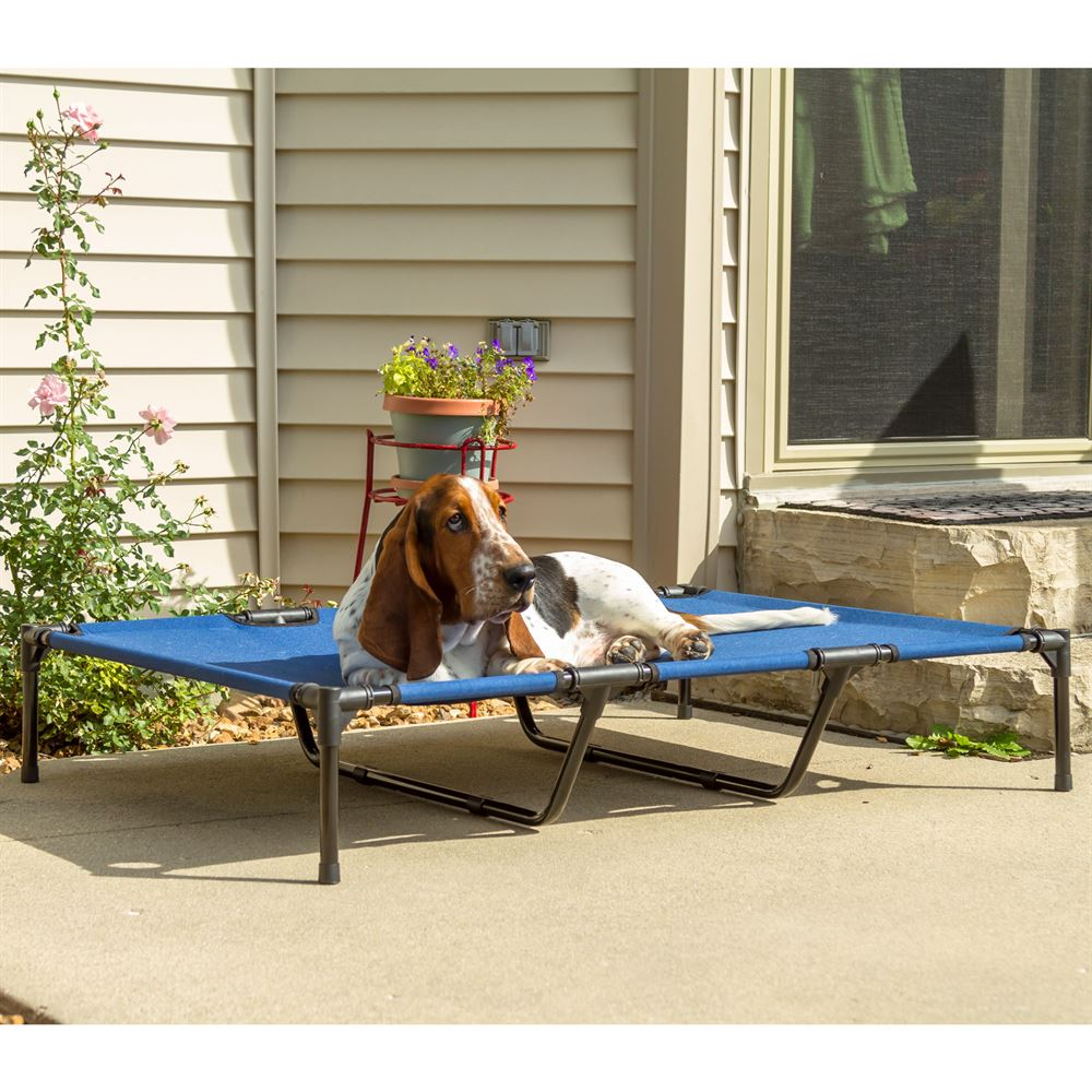 Lucky Dog Elevated Dog Bed