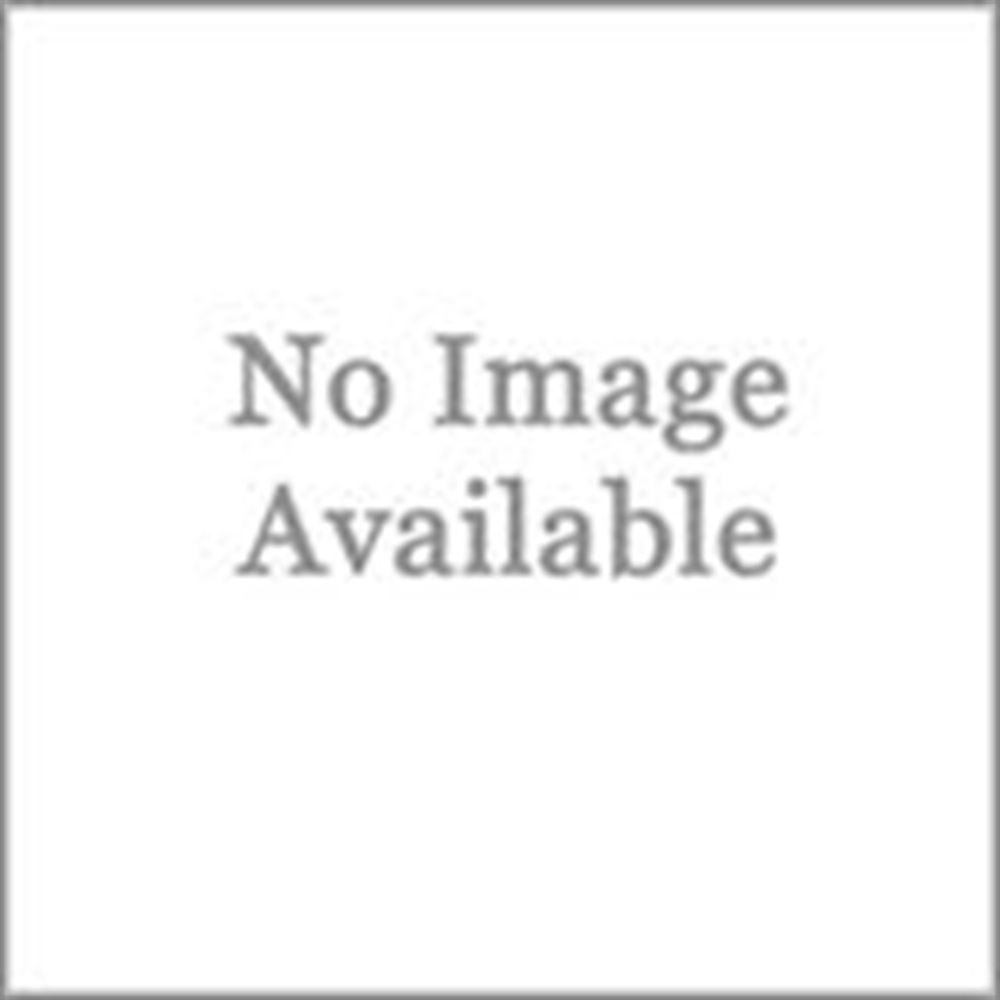 Black Widow Aluminum Non-Folding Straight Single Runner Motocross Dirt Bike Ramp - 6'4