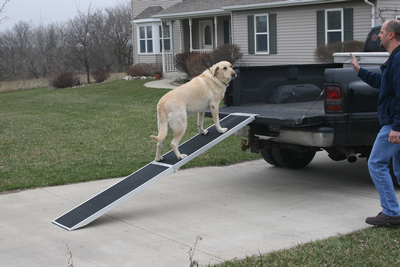 Aluminum folding dog ramps
